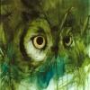 Oak & Owl Festival
